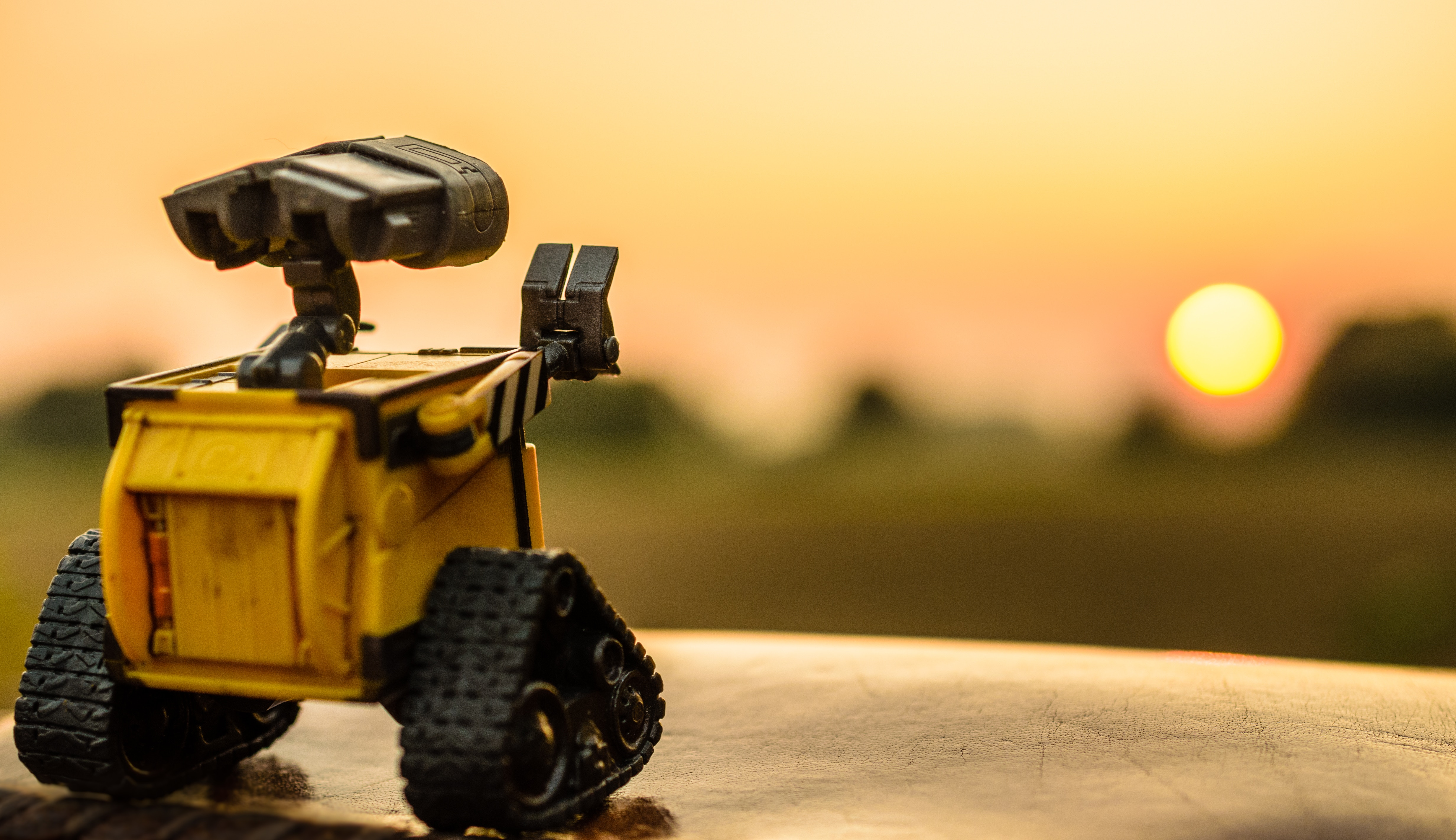 Wall-e looking at the sunset